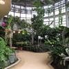 渋谷区ふれあい植物センターに行ってきました
