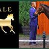 【セレクトセール2019】良血馬・注目馬の落札価格を大胆予想!【読まれている記事ランキング】