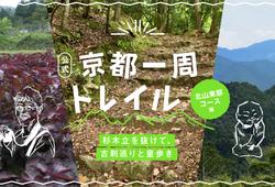 【京都一周トレイル®公式】杉木立を抜けて、古刹巡りと里歩き(北山東部コース編)