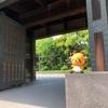 江戸城(東京都千代田区)さんぽレポート【おまけ編】/日本100名城