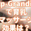 育乳マッサージ専門 p-Grandi(ピーグランディ)の特徴や効果は?