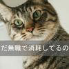 自己紹介&プライバシーポリシー ※随時更新