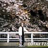 作例あり!みんな大好きCONTAX T2で撮る古都京都