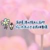 """インスタ映え!名古屋港の花の名所""""ブルーボネット""""が想像以上に良かった♡"""