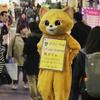 韓国デート【猫カフェ・고양이 놀이터】