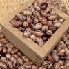 マヌカハニーとうずら豆で、黒豆風&おしるこ風