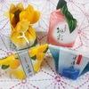 夏限定【清閑院 和菓子4種】 涼し気ある可愛さ!茶道を習う和菓子好き女子のおすすめ