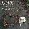 落ち葉で愛を伝えよう。