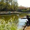 丸山公園の大池(埼玉県上尾)