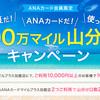 夏だ!ANAカードだ!使って100万マイル山分けキャンペーン!!