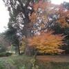 武蔵寺 その2