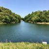 内池(和歌山県海南)