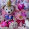 ♡ わが家のシェリーメイ 10歳の誕生日 ♡