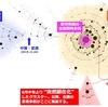 ウイルスの分子疫学と沖縄の流行把握への期待