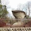 初春の恵那峡散策2【奇岩めぐり】