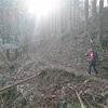 2月最終週もプチ縦走 倉岳山〜高畑山