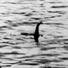 ヒャッハーッ‼︎!ネス湖でネッシー狩りだ!2018年6月科学者チームがネス湖でネッシー調査を行うと話題に