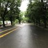 RunField 土曜練習会 駒沢公園2周(4.2km)*3