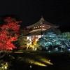 京都嵐山 鹿王院の夜間拝観を楽しむ!~ライトアップされた禅寺の幽玄美~