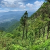 塔ノ岳・鍋割山に行ってきました