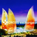 ミーシャが教える『CROSS exchage』