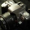 撒き餌レンズとジャンクカメラ / EF 50mm F1.8 II