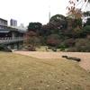 東京で紅葉の庭園④。港区編。旧芝離宮恩賜庭園、国際文化会館庭園、毛利庭園、檜町公園