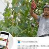 全国の生産者から直接食材が購入できる「ポケットマルシェ」アプリ公開