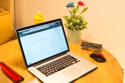 【ブログ報告】ブログを始めて二週間のまとめ。ちょっとだけpv増加。