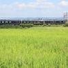 田んぼの脇を走る「青のシンフォニー」