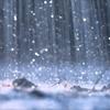 ~雨の表現は日本は脅威の400オーバー。ジャパニーズクレイジー!!