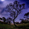 星景サルベージその28 月夜と影