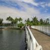 ハワイ島(4)聖地ココナッツアイランド