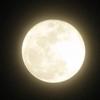 牡羊座新月「禊実りイベント」~本当の自由・新しい出会いはコインの裏表~