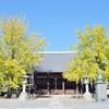 頂妙寺のイチョウの黄葉、見頃や現在の状況。