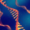 ♥メニュー~創造の化学RNAが目覚める~【エターナルライフ∞ヒーリング】
