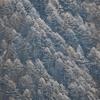 晩秋から初冬へつづく合戦尾根…燕岳