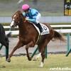 タコイチの【今週の勝負レース】シンガポールTC賞!