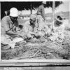 1945年 8月26日 『マイナスからの再建』
