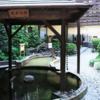 板橋にある「前野原温泉 さやの湯処」は総合的にかなりおすすめ!【体験談・レビュー】