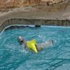 男鹿水族館GAOに新たなホッキョクグマがやってきた