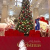 クリスマスツリー at 日本橋高島屋