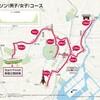 2020年東京五輪の男女マラソンコースは我が家の前も通る