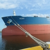 未経験で船員に転職?メンタル弱かったら船員は厳しいですよ。