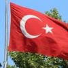 2017年のトルコリラはどうなる?