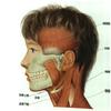 これで顎関節症がわかる!12