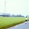 夏の暑い日、鉄塔と少女を撮る