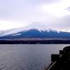 山中湖から見た黄昏時の富士山と湖上を飛ぶアオサギ