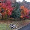 ロードバイクはあなたをまだ見たことがない場所に運んでくれる ロードで行く日帰り旅行