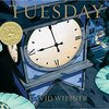 Tuesday / かようびのよる by David Wiesner